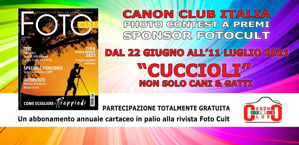 canon club photo contest fotocult - CUCCIOLI NON SOLO CANI E GATTI.jpg